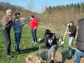 Obstbaumbepflanzung unter syrischer Mitwirkung